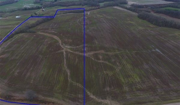 43 +/- ACRES – WALTER & CLAUDINE BUNN