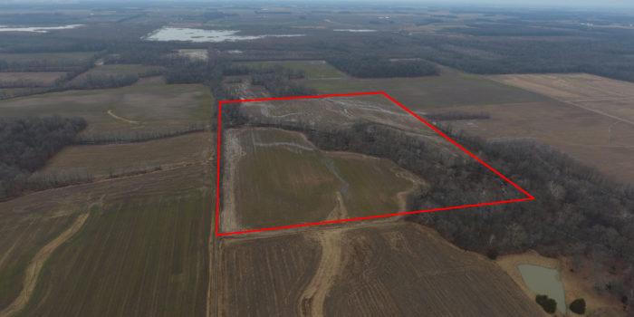 Land Auction – Mary Pry, Carolyn Kuenstler, Mark Keller And Matt Keller